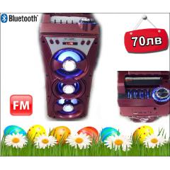 300в +EQ нова МS-629 Караоке Активна Колона с Bluetooth,USB,микрофон