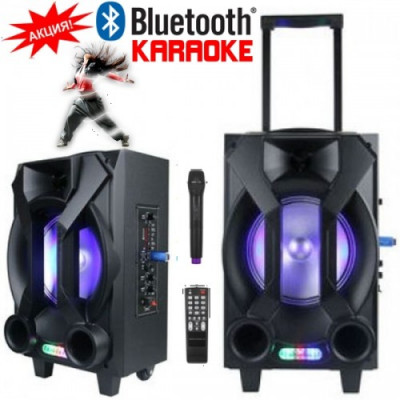 """Караоке колона Kemi E31 8""""с вграден акумулатор, Bluetooth МР3 плейър от SD карта или USB, Безжичен микрофон и Цветомузика"""